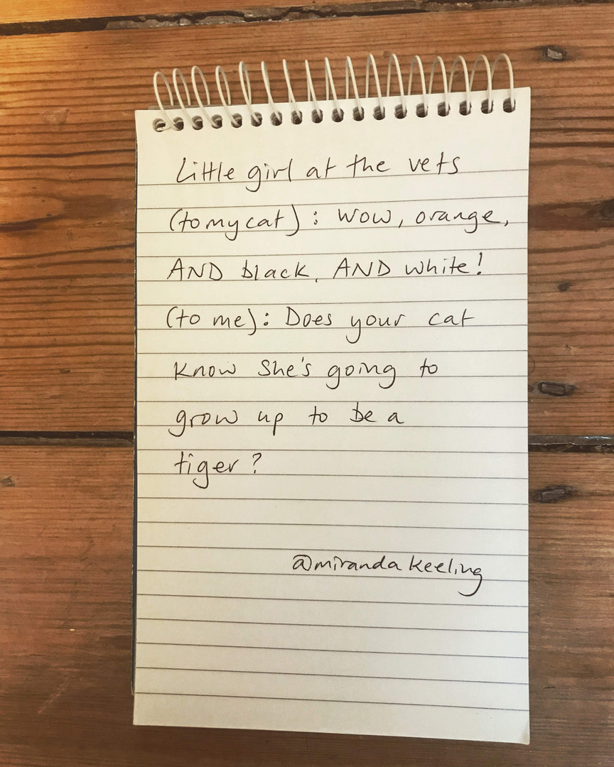 'Tiger Cat' Miranda Keeling