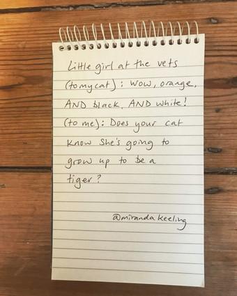 'Tiger Cat' Miranda Keeling