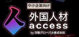 G-access Logo.png