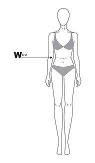 body waist.jpg