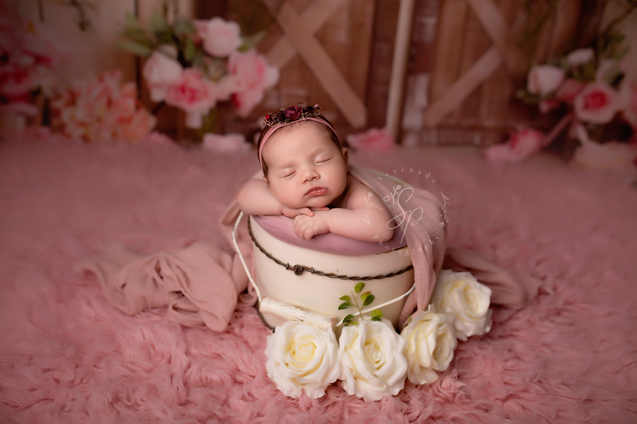 newborn baby girl in the cream and pink colours