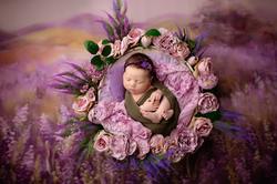 Newborn photography Chester Cheshire, Baby photography Chestero studio