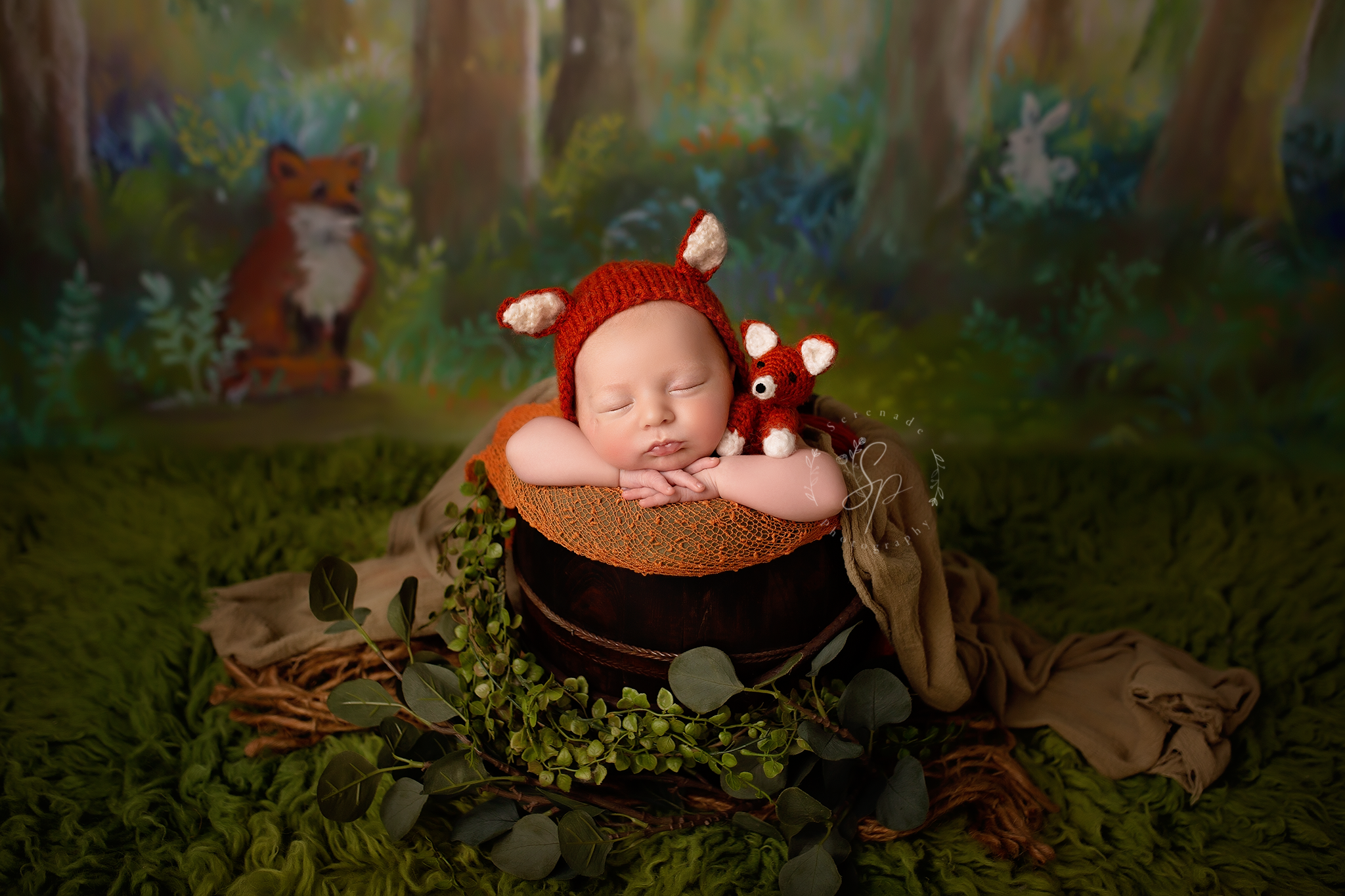 woodland themend photoshoot for newborn boys with fox hat