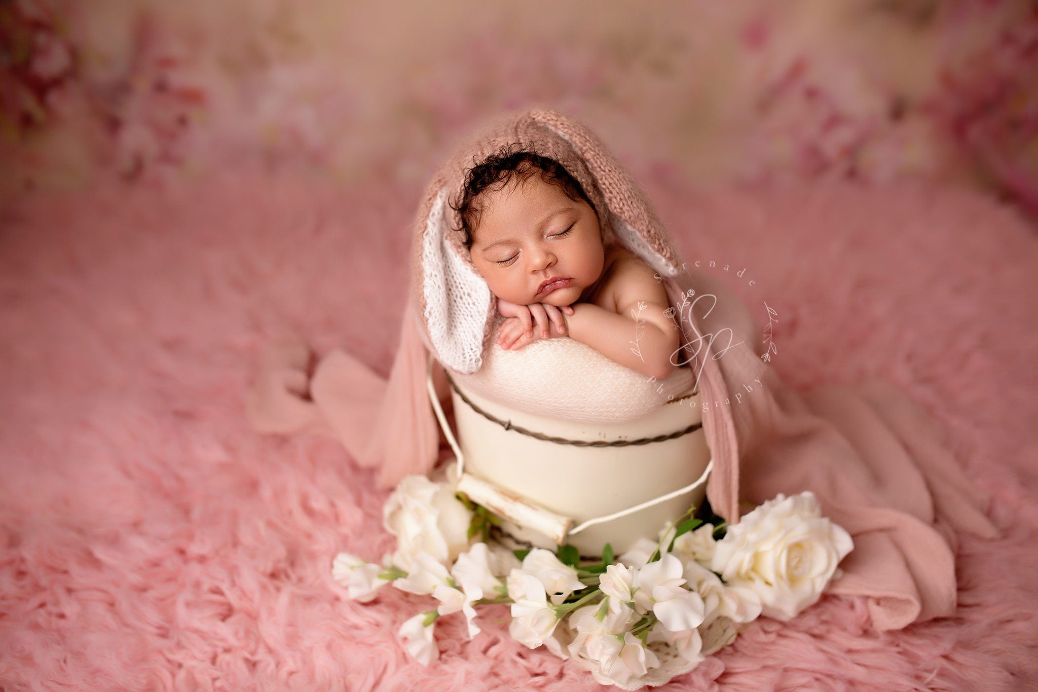 Newborn photographer Chester
