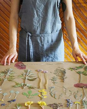 framed botanicals.jpg