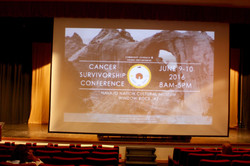 CancerSurvivorship2