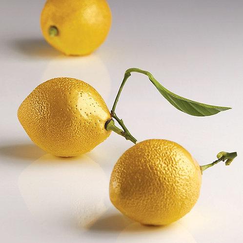 Citron / Lemon AF006S