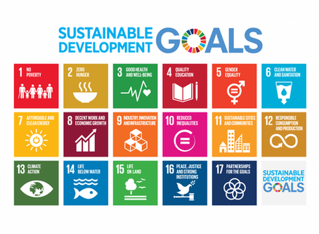 A world dominated by platform companies lacks good platforms for the SDGs: so what can be done?