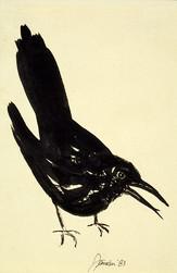 Crow Speaker