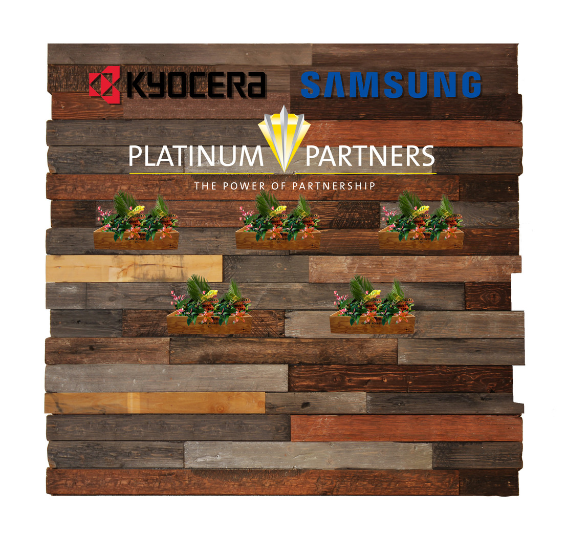 Wood wall PP Wht.jpg