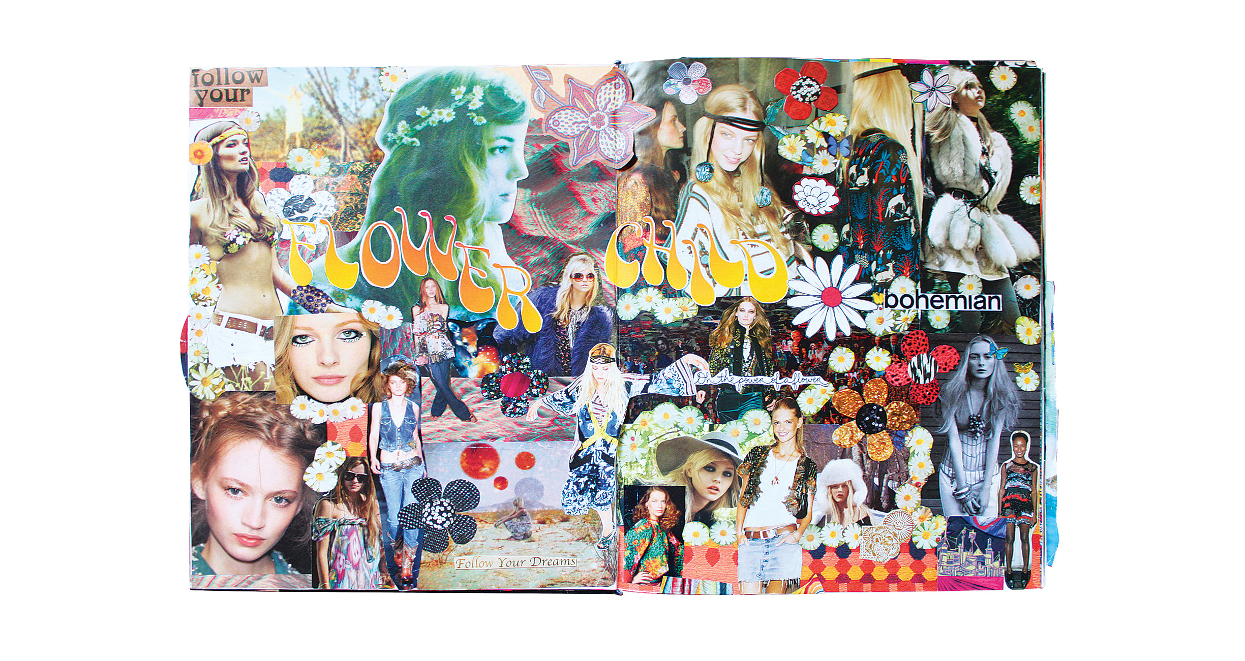 collage - bug 10