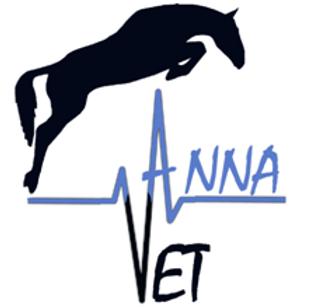 veterinario cavalli roma lazio
