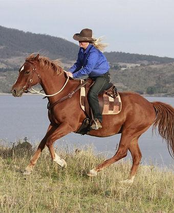 Thredbo Valley Horse Riding