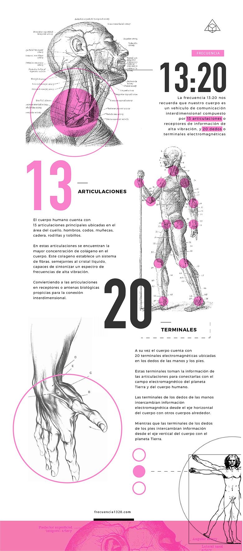 infografias-11.png