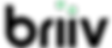 BRIIV%20Logo_edited.png