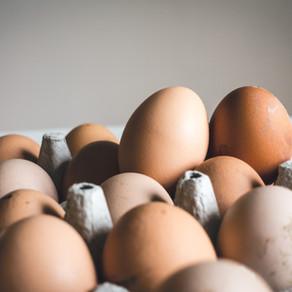 O ovo de galinha caipira é mais saudável que o ovo de granja?