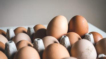 Huevos orgánicos