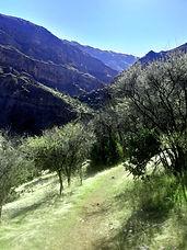trekkingmelocoton.jpg