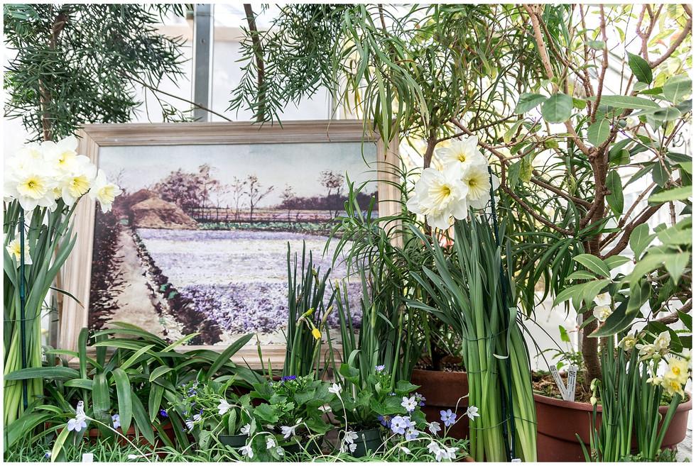 Smith College Botanical Garden Engagement | Northampton, MA | Syracuse Wedding Photographer