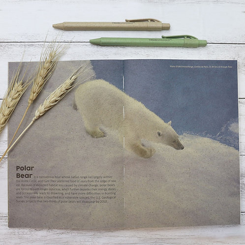 TRUEGRASSES Paper Notebook A5