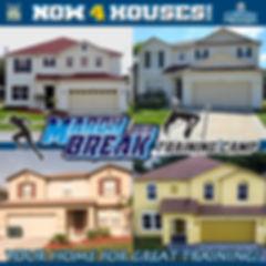 4 Houses.jpg