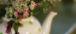 teapotflowers