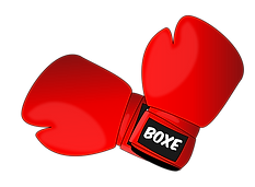 boxing-1293088_640.png