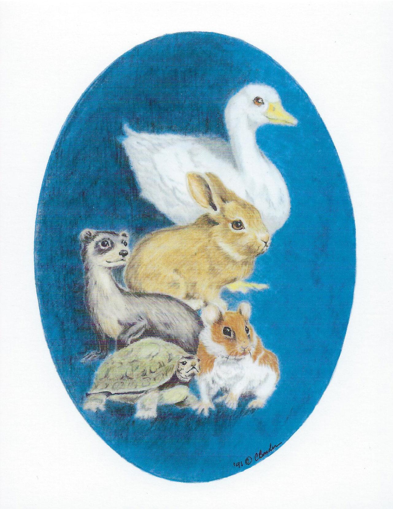 S14 Pet Sympathy Card