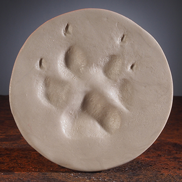 Almond Shimmer ClayPaws® Print