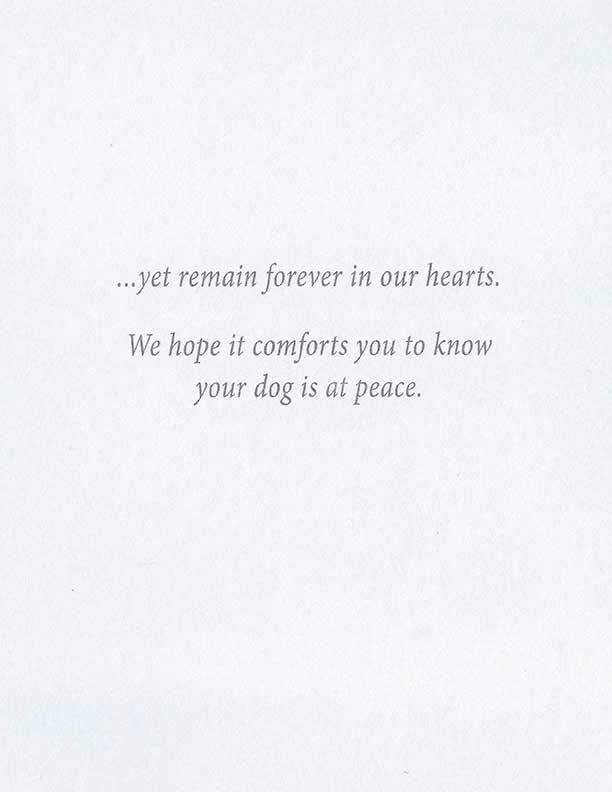 S100 Dog Sympathy Card