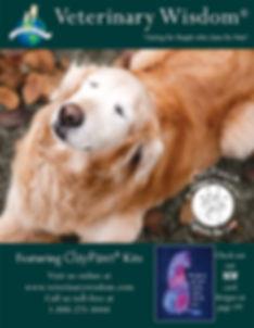 Veterinary Wisdom 2020 Catalog Website-C