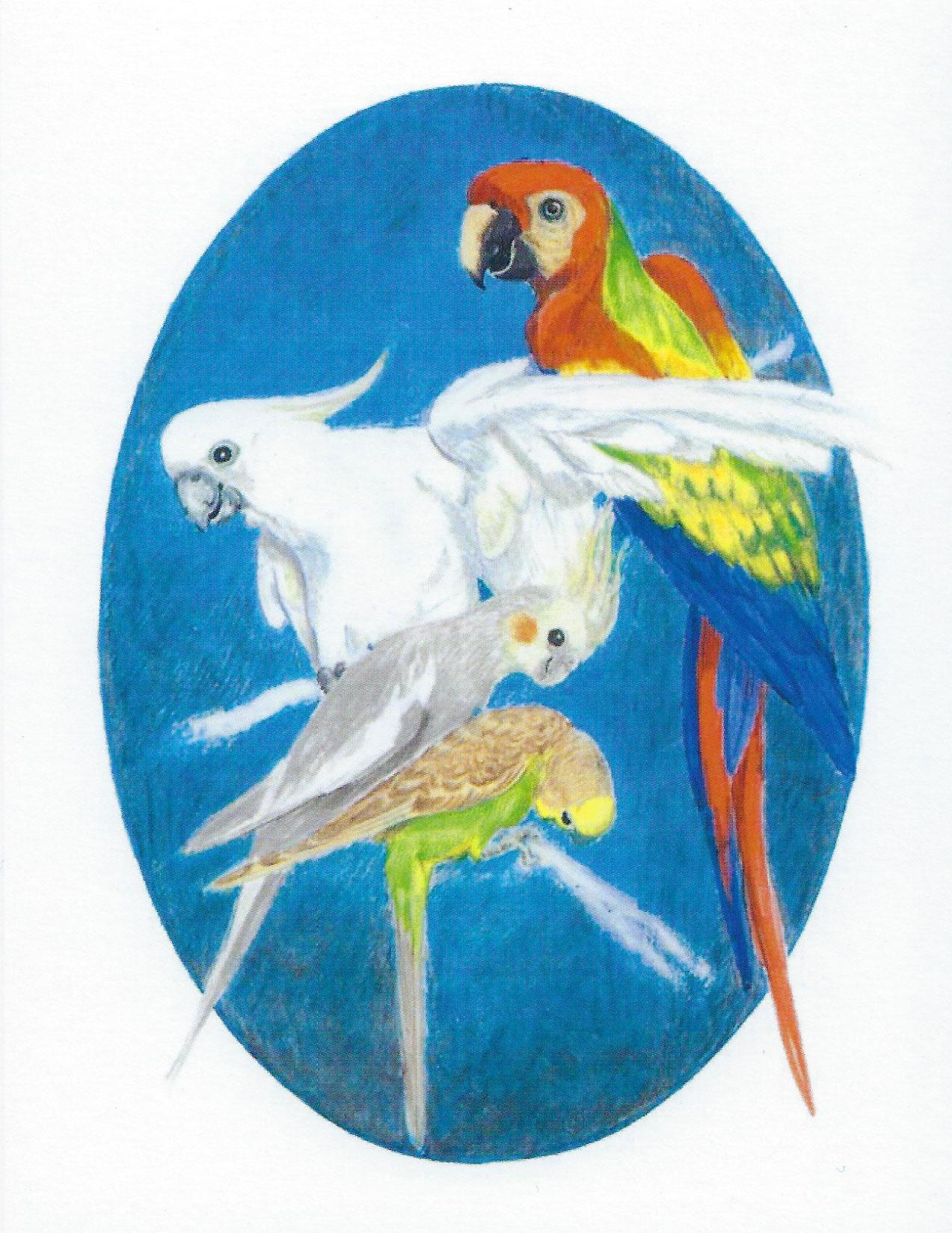 S16 Bird Sympathy Card