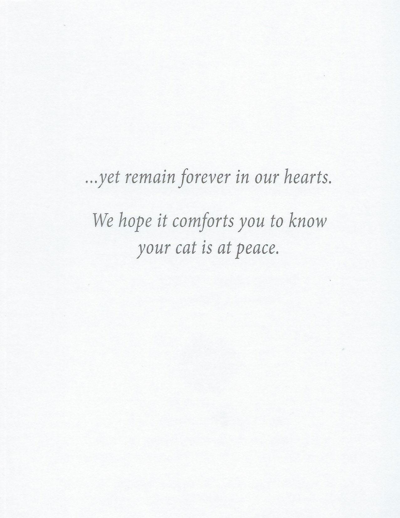 S101 Cat Sympathy Card