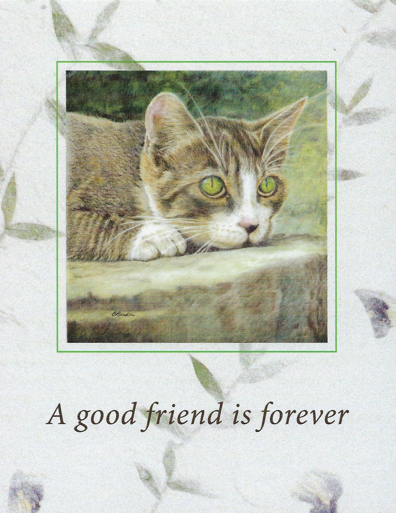 S90 Cat Sympathy Card