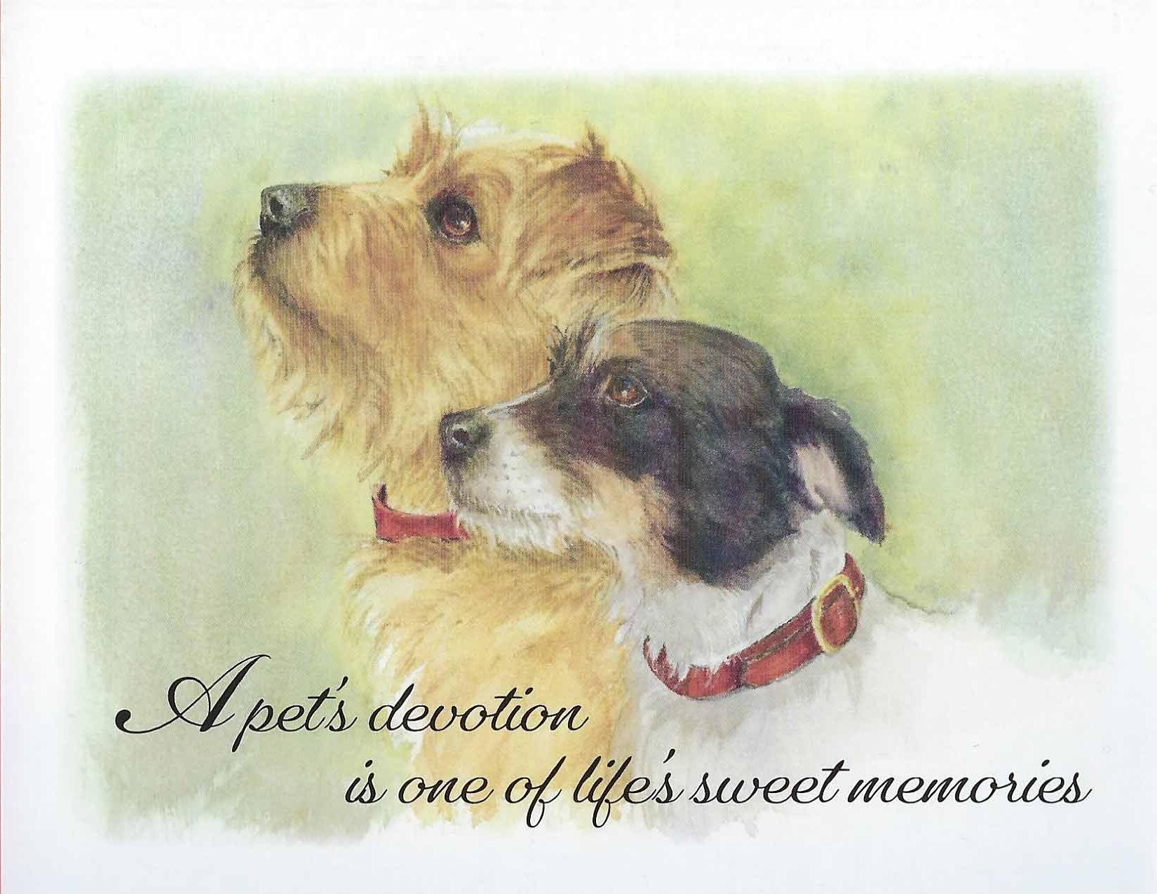 S94 Dog Sympathy Card