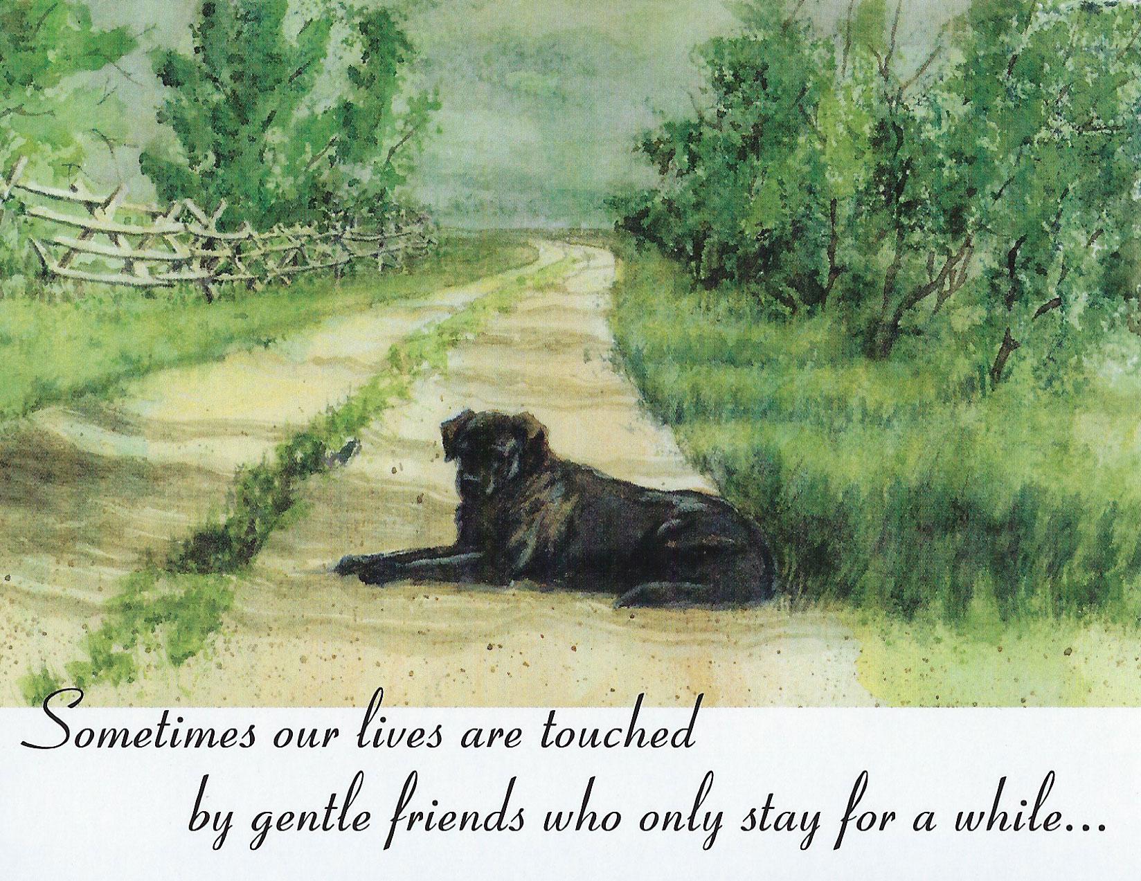 S95 Dog Sympathy Card
