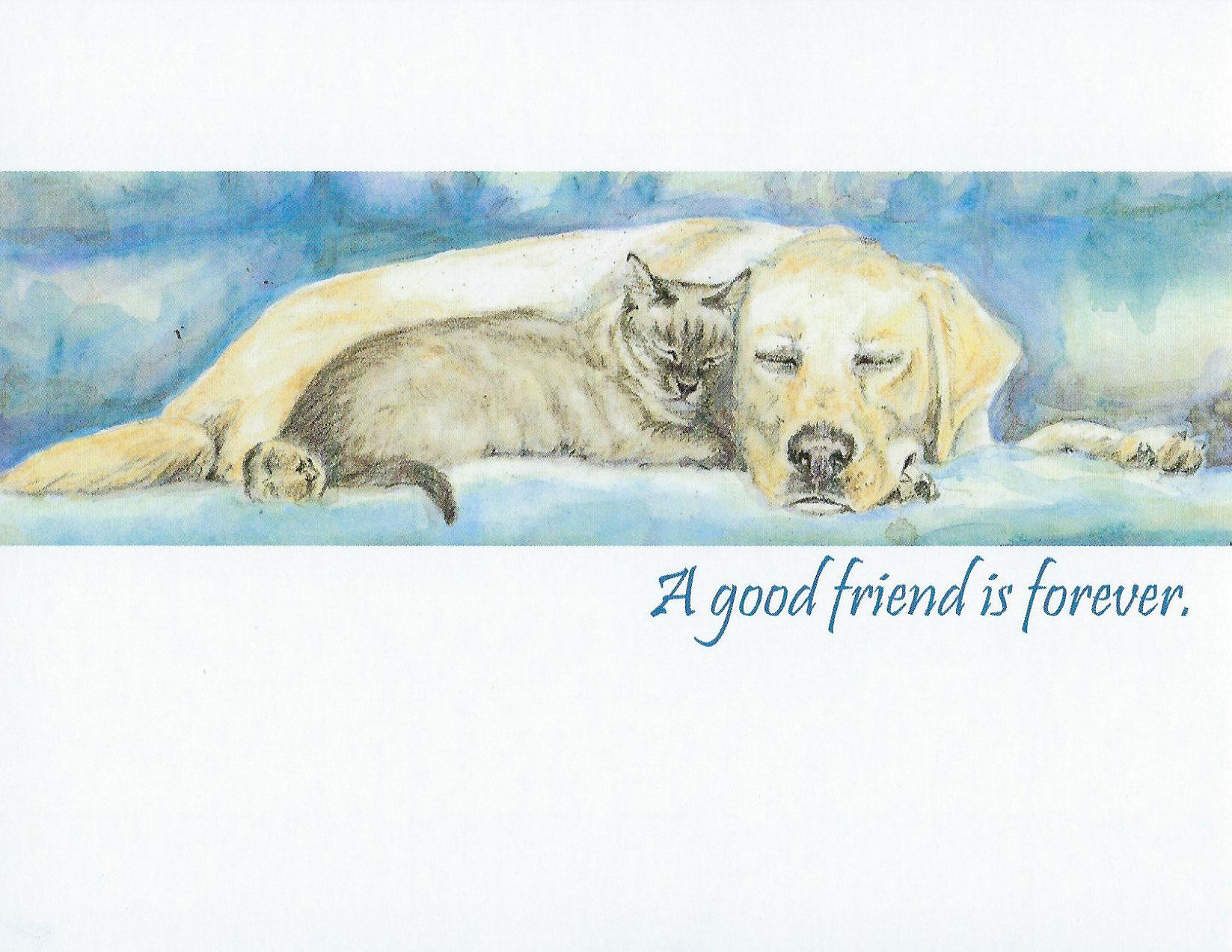 S55 Pet Sympathy Card