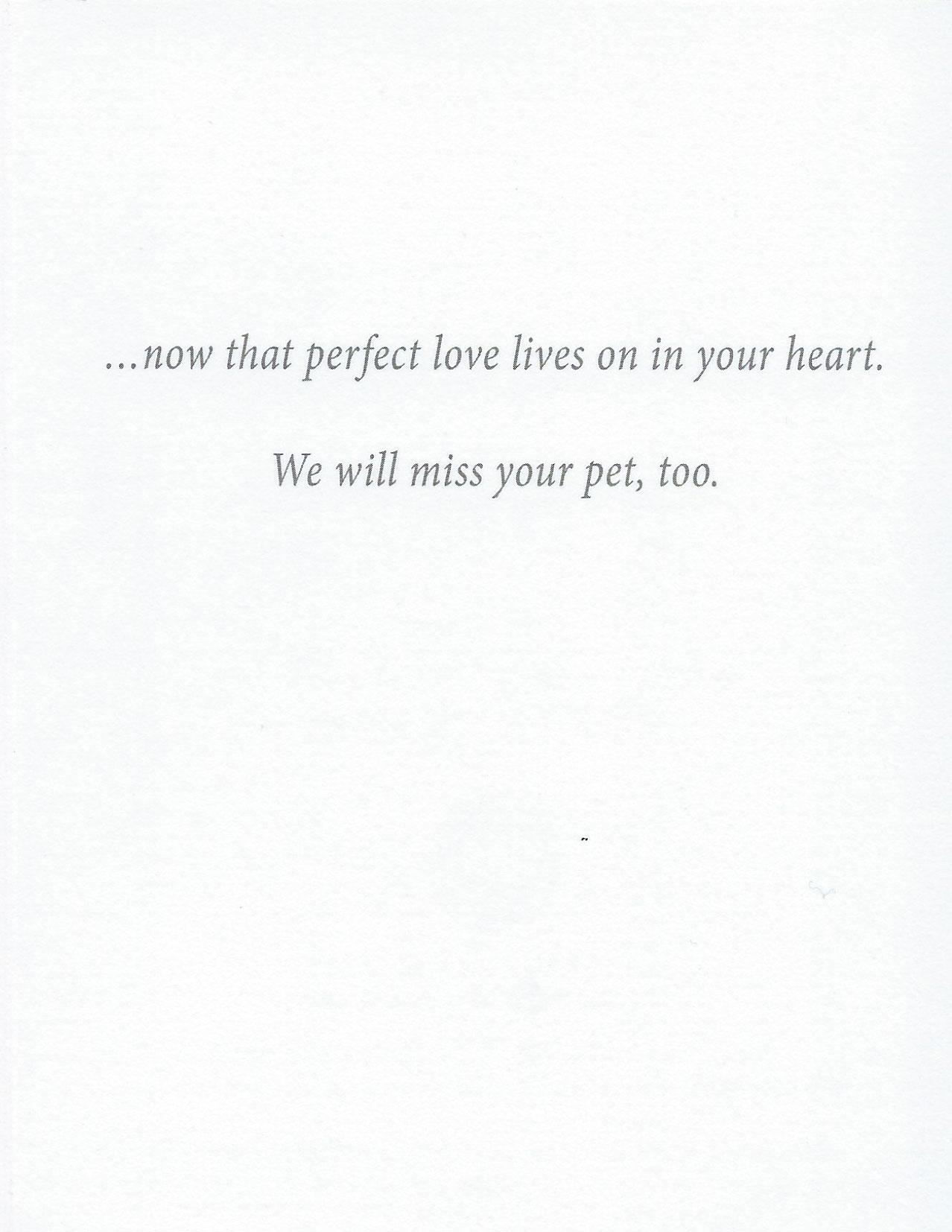 S203 Pet Sympathy Card