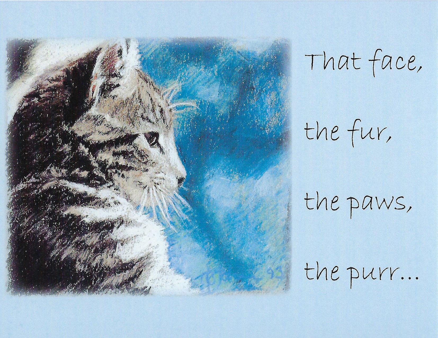 S201 Cat Sympathy Card
