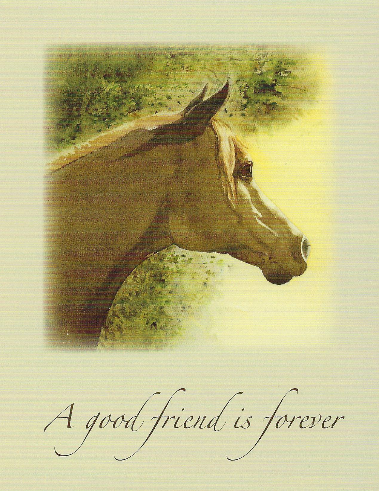 S102 Horse Sympathy Card