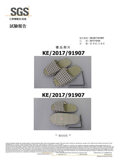 SGS 檢測_page-0003.jpg