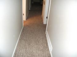 Porter Lane Carpet