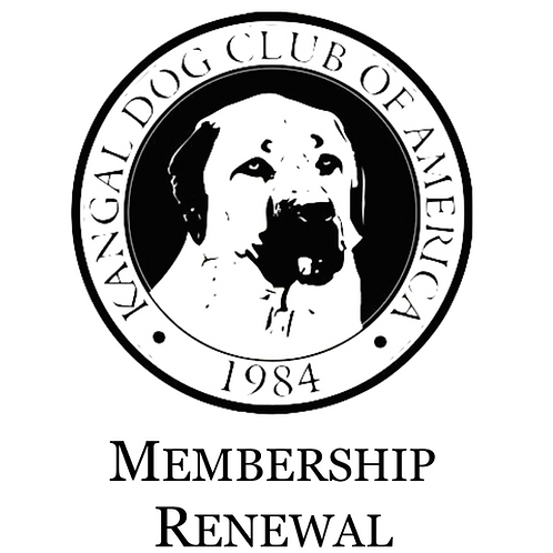 International Membership Renewal