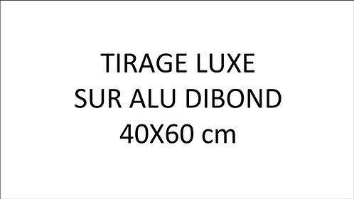 Tirage Alu Dibond, laboratoire photo pro 40 X 60 cm