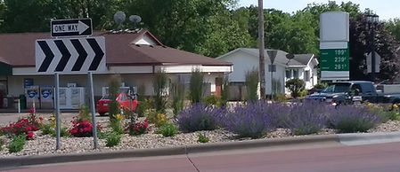 Water St. roundabout flowers 2020.jpg