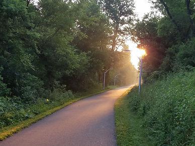 Morning Trail.jpg