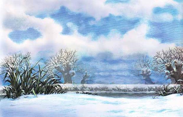 wiilows winter bank.jpg