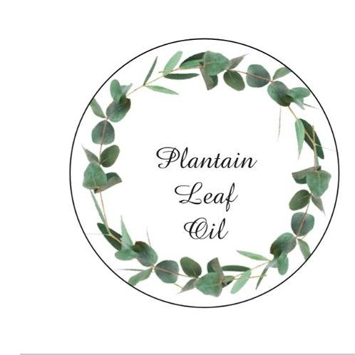 Plantain leaf oil