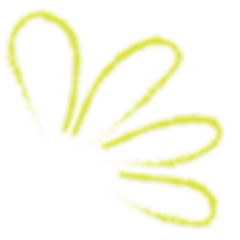 WorkBook_Assets_Lime Floral 2.png