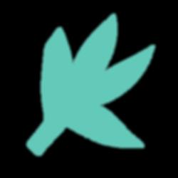 WorkBook_Assets_Aqua Floral.png
